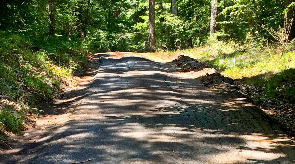 Driveway Hill Before Construction Begins